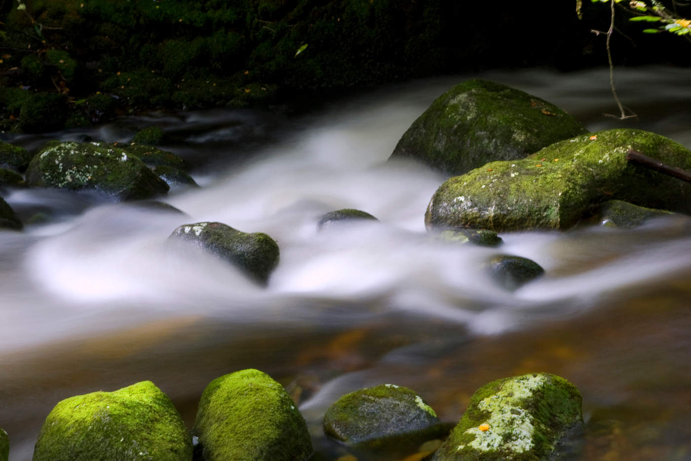 Green boulders and flowing river