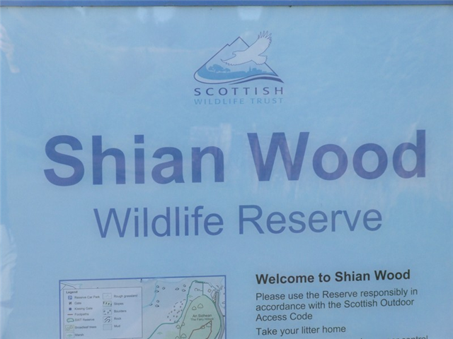Shian Wood Wildlife Walk